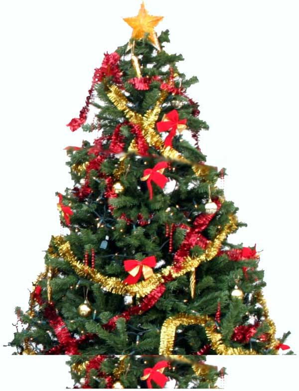 christmas-tree_600.jpg