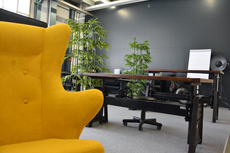 Ein Bild, das drinnen, gelb, Boden, Raum enthält.  Automatisch generierte Beschreibung