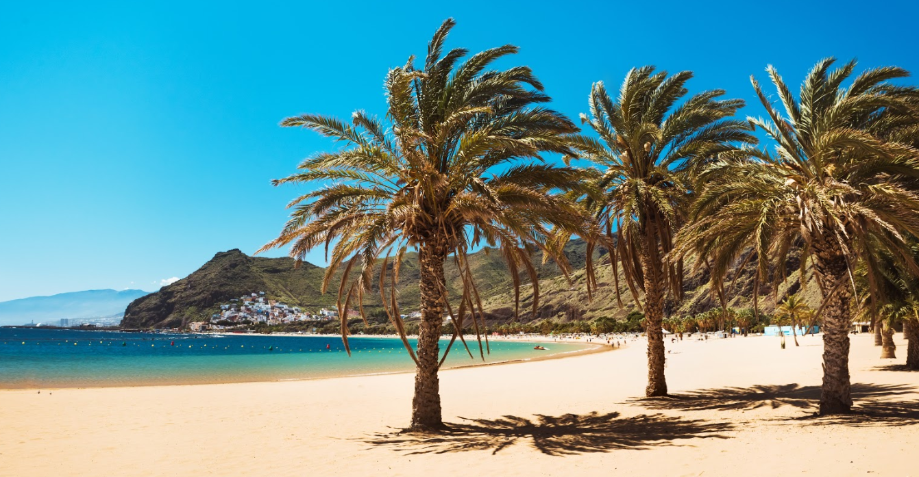 Playa paradisíaca con palmeras