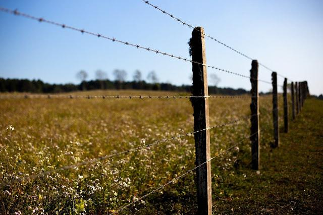A barbed wire fence in a field  Description automatically generated with medium confidence