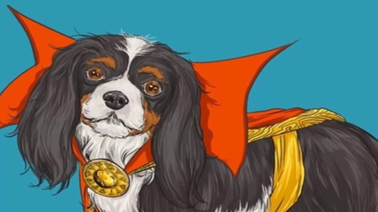 Học tiếng Nhật qua truyện cổ tích: Chó Săn và Chó nhà