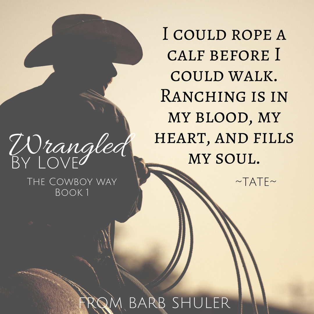 Wrangled by Love Teaser 2.jpg