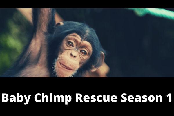 Baby Chimp Rescue Season 1 poster