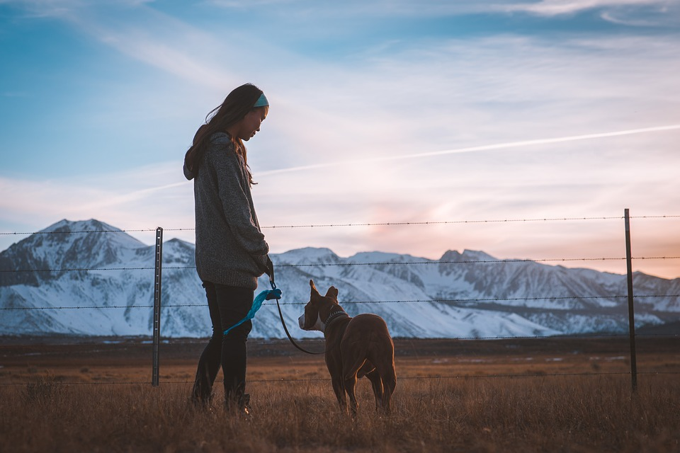 Woman and dog outside with mountains in background. Pet-friendly holiday destinations