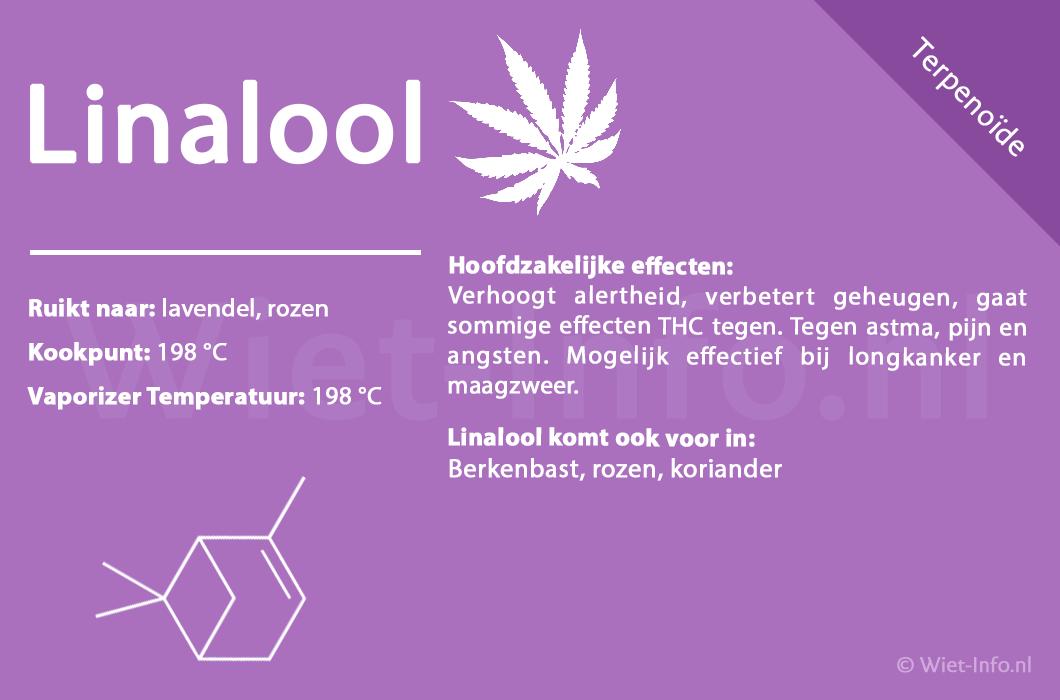 linalool informatie