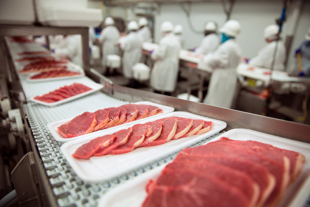 preventing cross contamination in food processing
