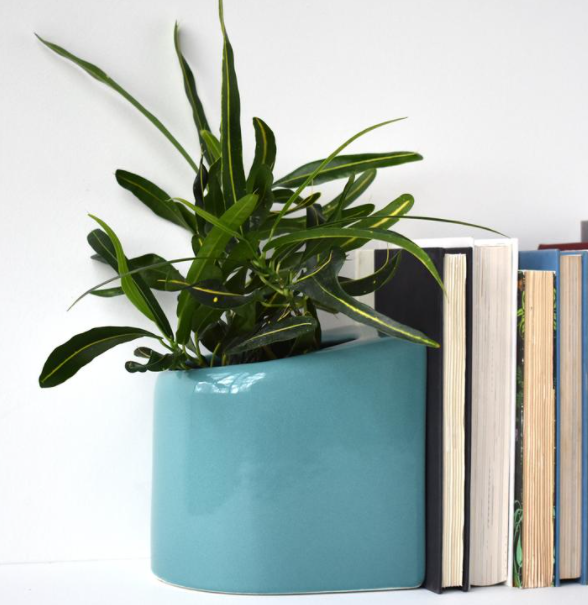 Blue planter bookend with green plant holding four books against white wall background