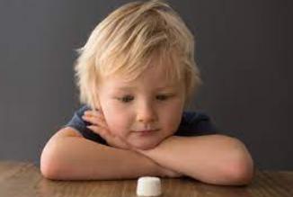 Criança encarando um marshmallow.