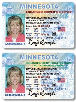 Student Minnesota International Driver License