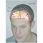 brain electromagnetism