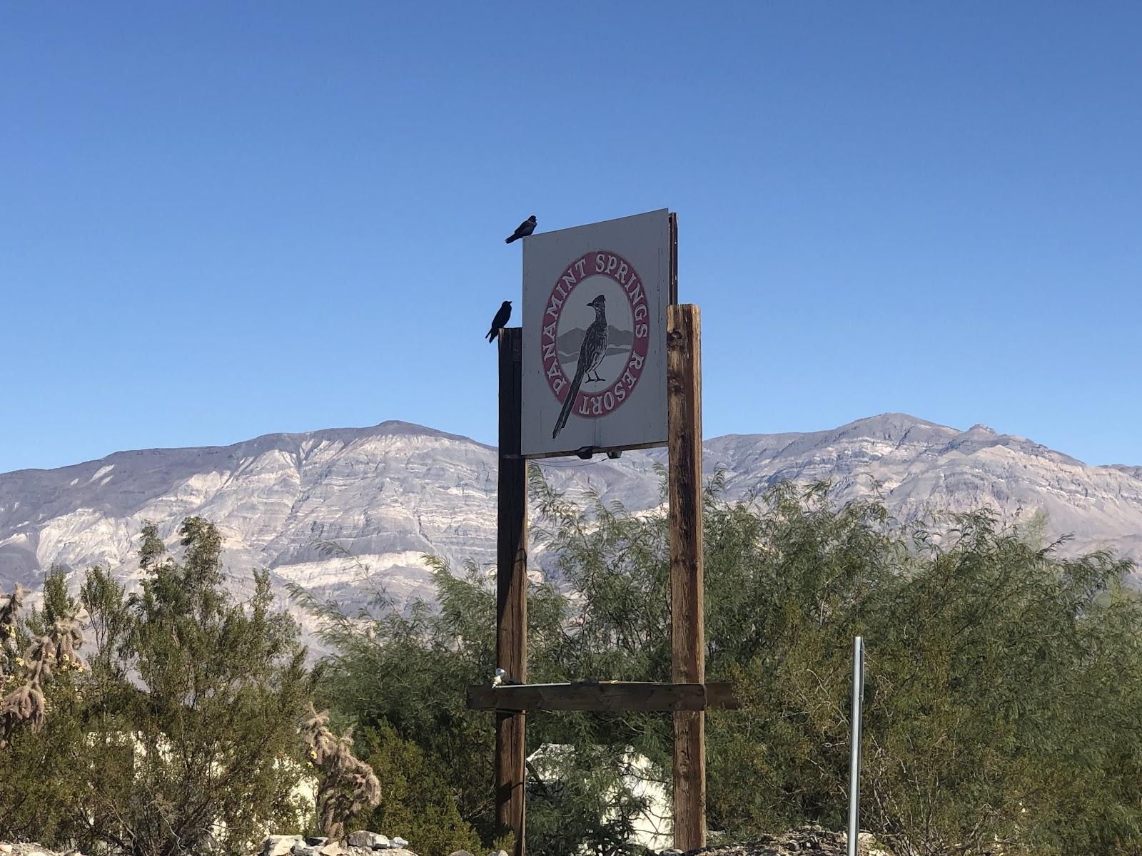 Bike climb Panamint Grade - panamint resort sign with birds on it.