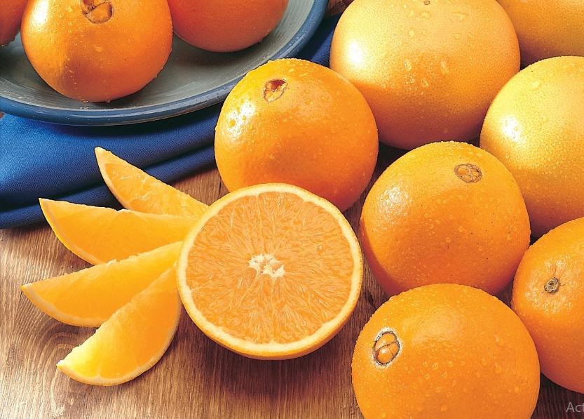 Những quả cam Navel to tròn, lớp vỏ chúng có màu vàng tươi óng ả.
