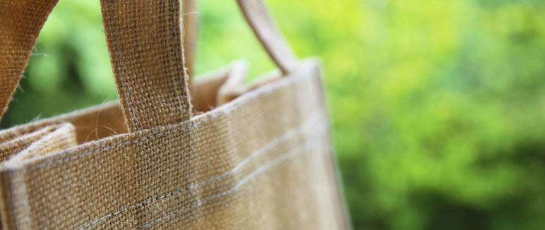 ecologic bag