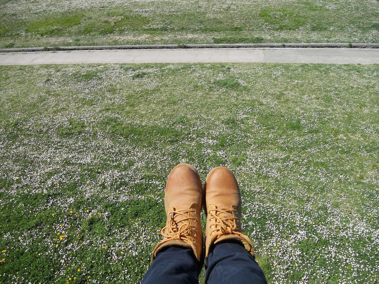La primavera a mis pies.jpg