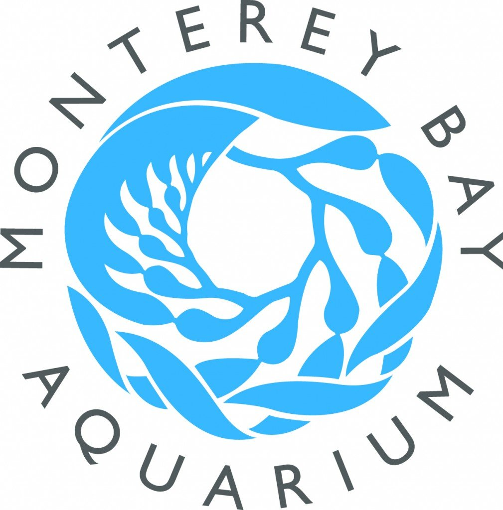 Monterey Bay Aquarium Summer Camp - Monterey Bay Parent Magazine