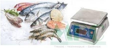 Cân thủy sản lựa chọn hoàn hảo cho công việc của bạn