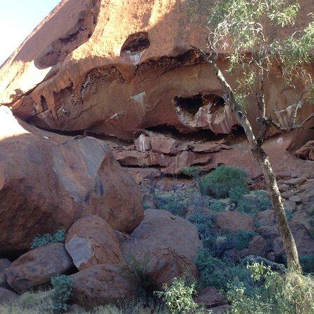 烏魯魯的洞穴