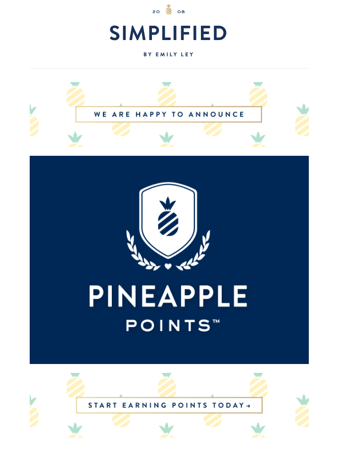 Emily Ley Pineapple Points launch email