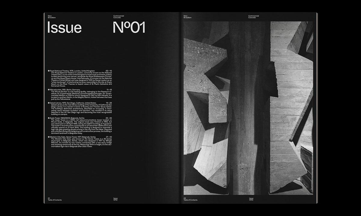 Editorial Design : New Brutalism Controversial Concrete 26