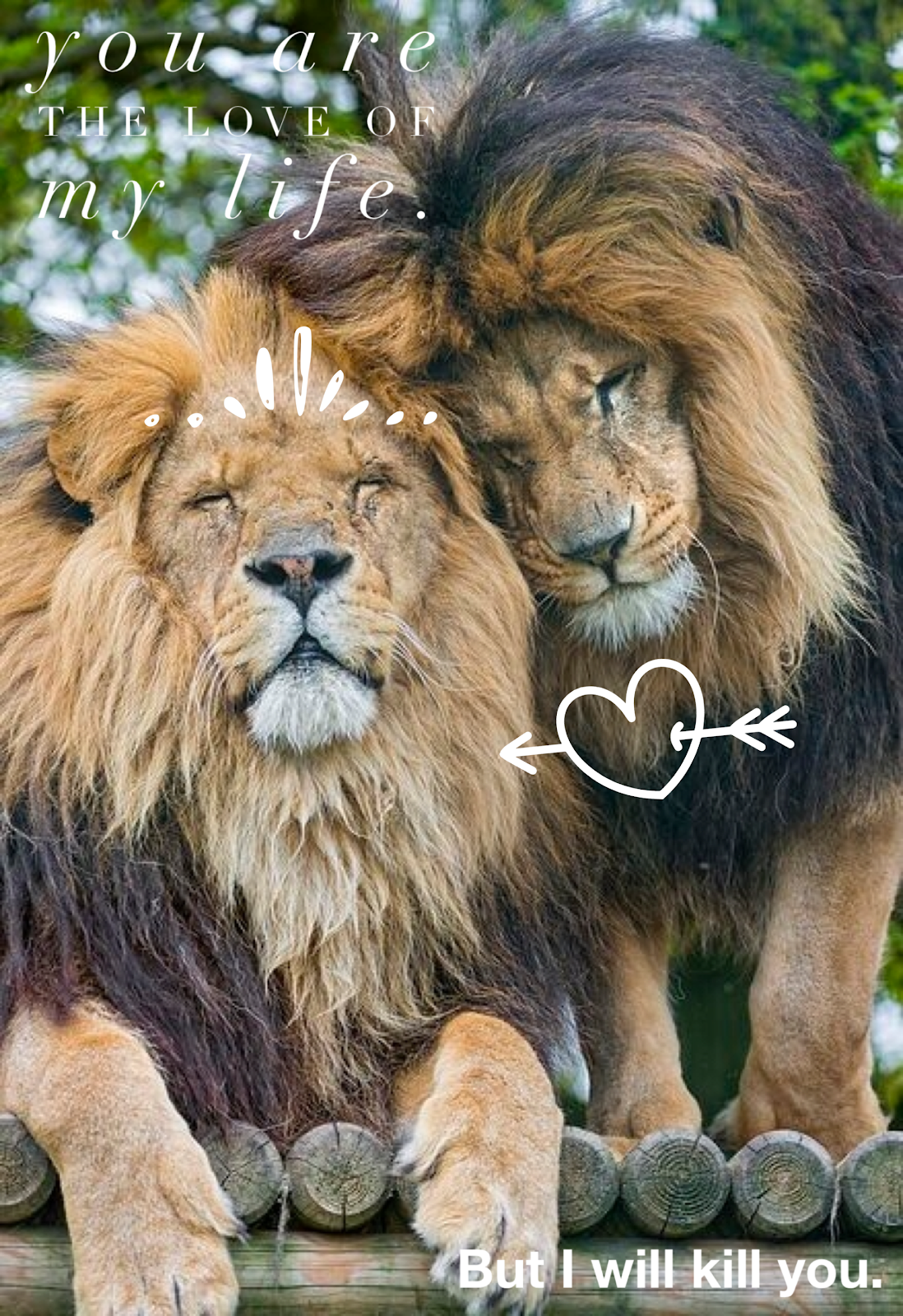 The Leo love is real. (image credit: Kelsey Skrinde)