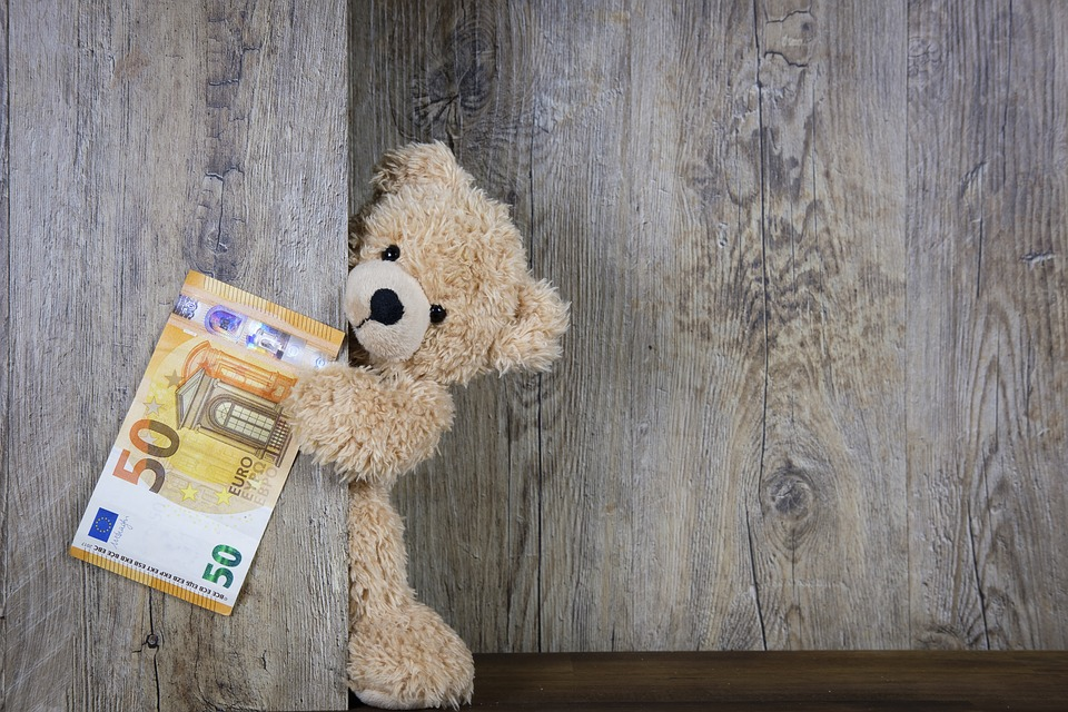 Money, Euro, 50 Euro, 50, Banknote, Cash, Bear