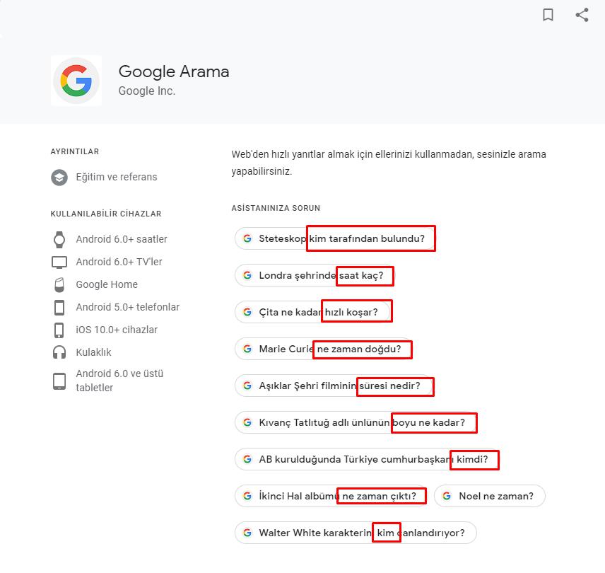 Google Asistan Sorguları