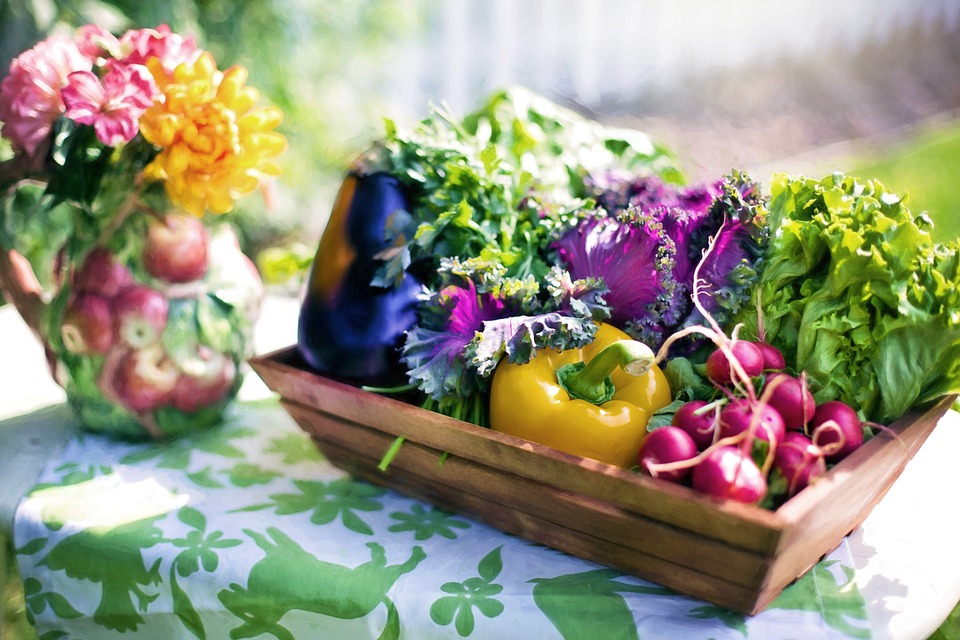 vegetables-790021_960_720.jpg