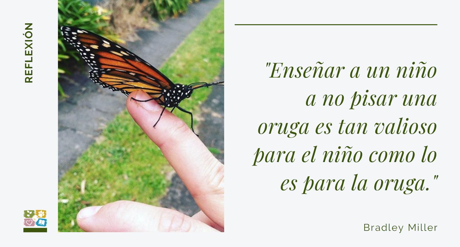 Foto de mariposa en mano con texto: Enseñar a un niño a no pisar una oruga es tan valioso para el niño como lo es para la oruga. Bradley Miller.