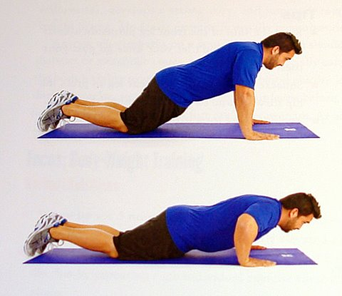 Beginners Workout - Knee Push-ups