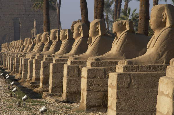 Image of EGYPT. TEMPLE OF LUXOR. Avenue of the Sphinxes, At the back, the first pylon or monumental gateway built by Ramses II. Ancient Thebes, © Tarker / Bridgeman Images