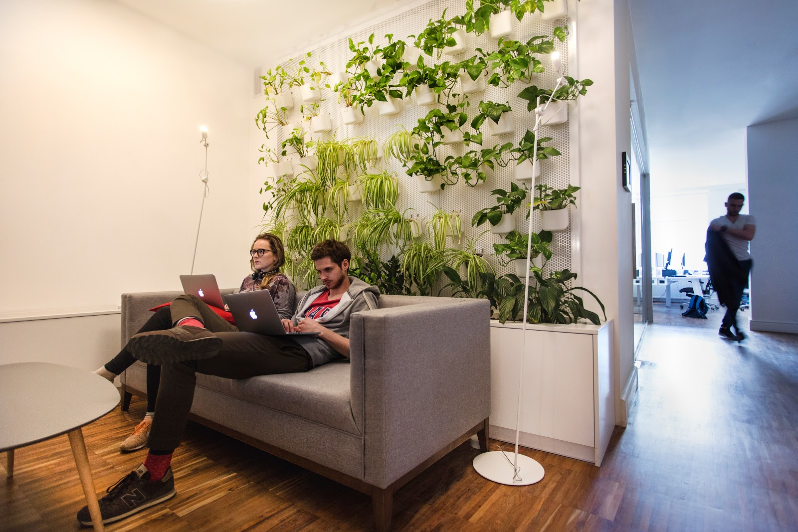 Green area in the Monterail office