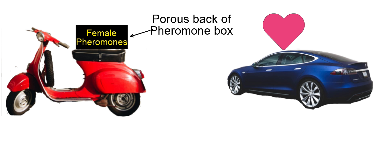 Figure 5: Honey Pot technique diagram for capturing self driving cars