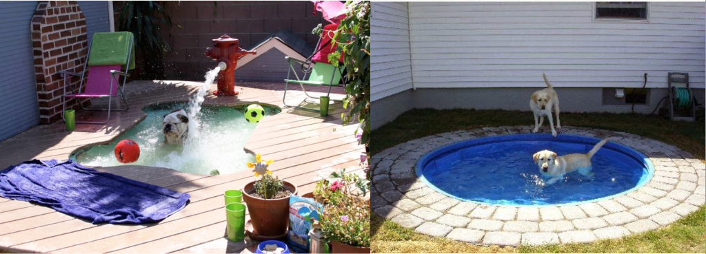 With dog pools your client can be as extravagant or as economical as they want. Photo: (Left)  mywebroom.com (Right) gardentherapy786.blogspot.com