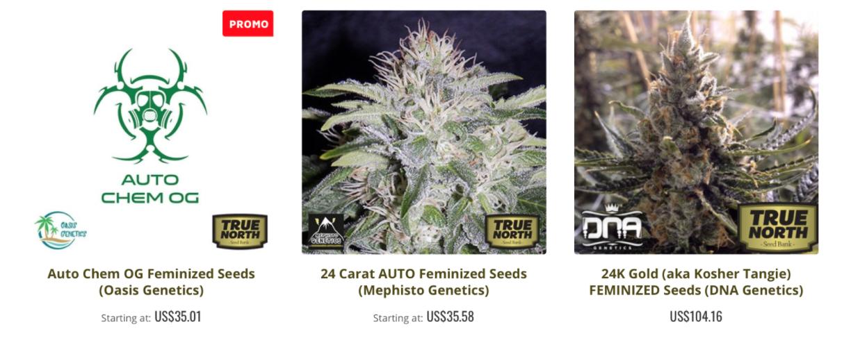 True North Types of Seeds