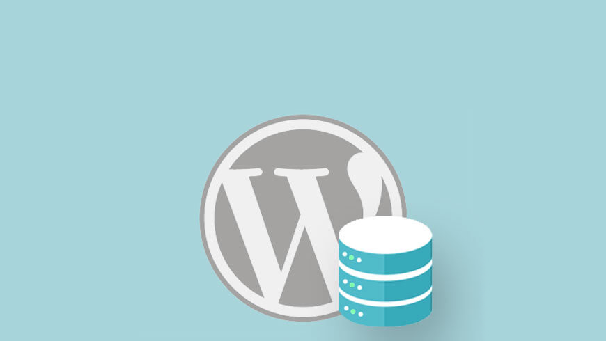 Stepwise-Guide-to-Back-Up-WordPress2