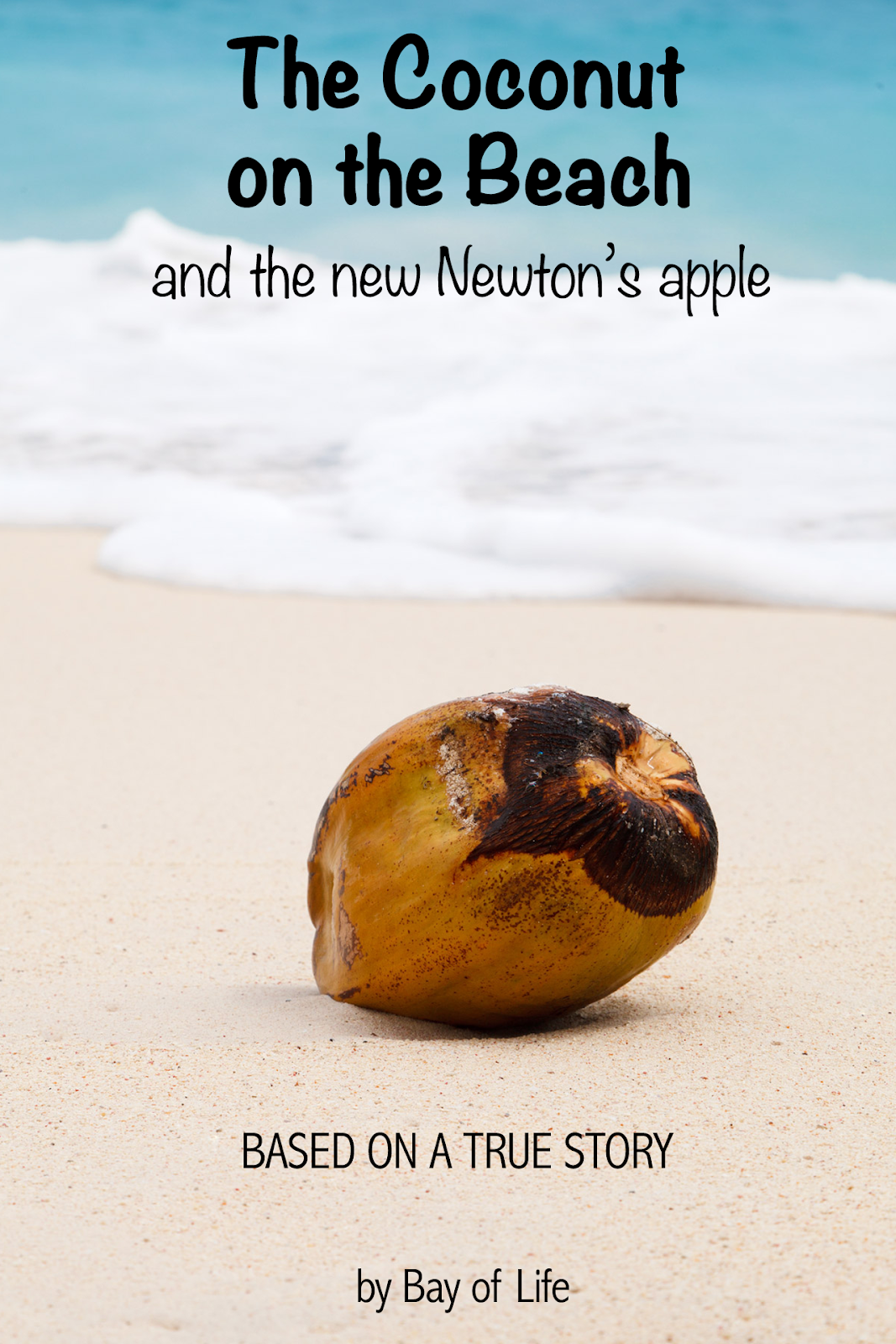 coconut-on-beach.png