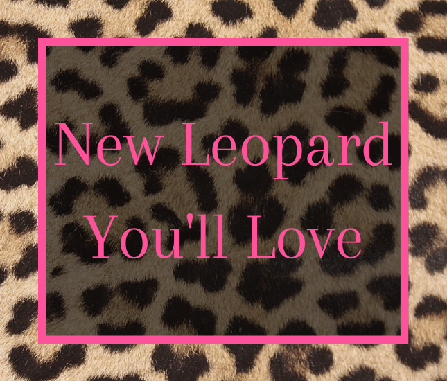 marleylilly, monogram, monogrammed gifts, personalized gifts, leopard fleece vest, camera strap, leopard bar bracelet, leopard bible carrier, leopard cardigan, leopard feather earrings, stadium approved crossbody