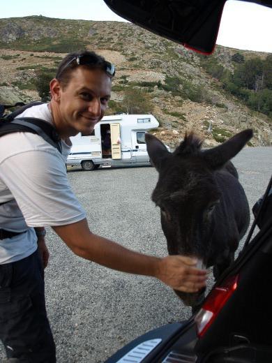 http://www.mw-xp.de/images/Korsika2011/2esel.jpg