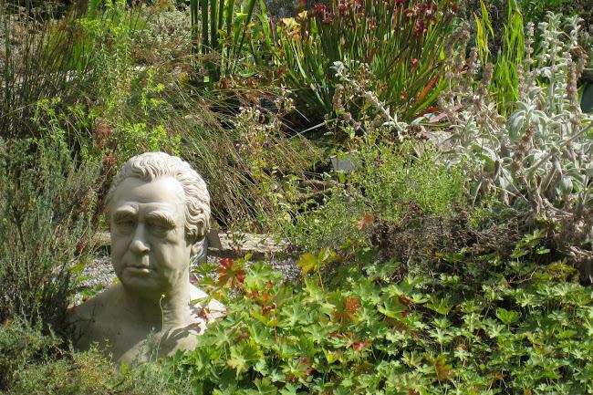 伦敦切尔西物理花园