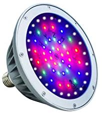 WYZM120V RGBW LED Pool Light Bulb