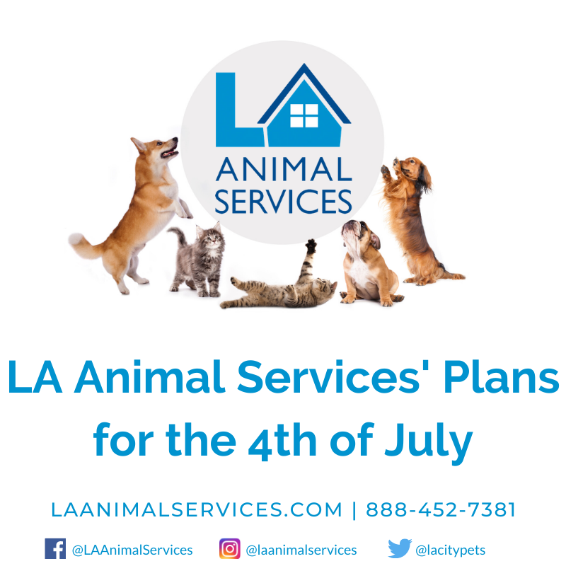 LA Animal Services Plans for July 4th Weekend