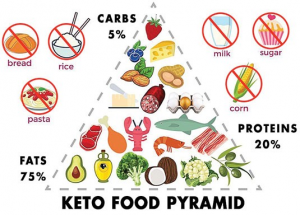 Taking a Closer Look at the Keto Diet and its Implications – SQ Online