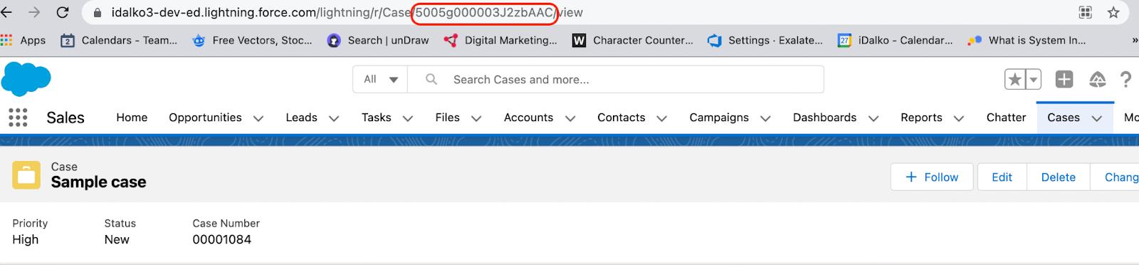 salesforce case URL