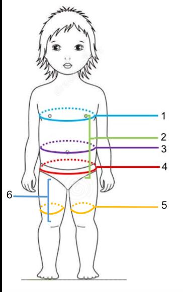 Write your measurements below  / Escribe las medidas abajo