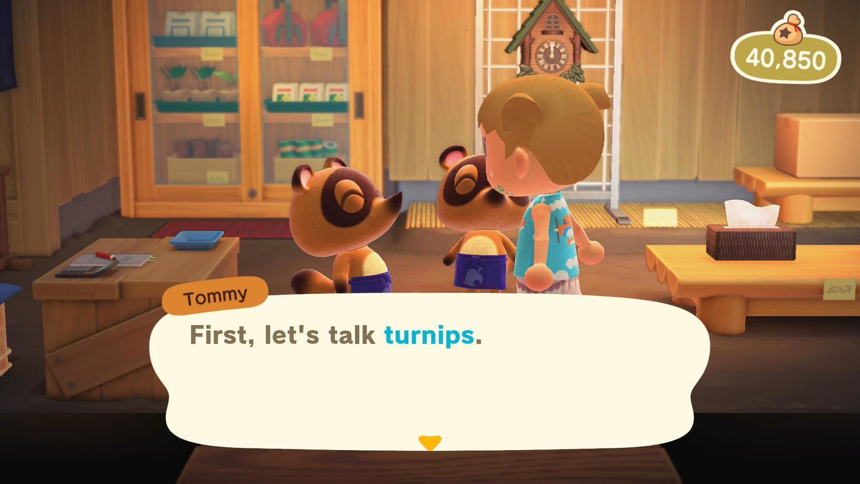 Daisy Mae & Turnip in Animal Crossing New Horizons