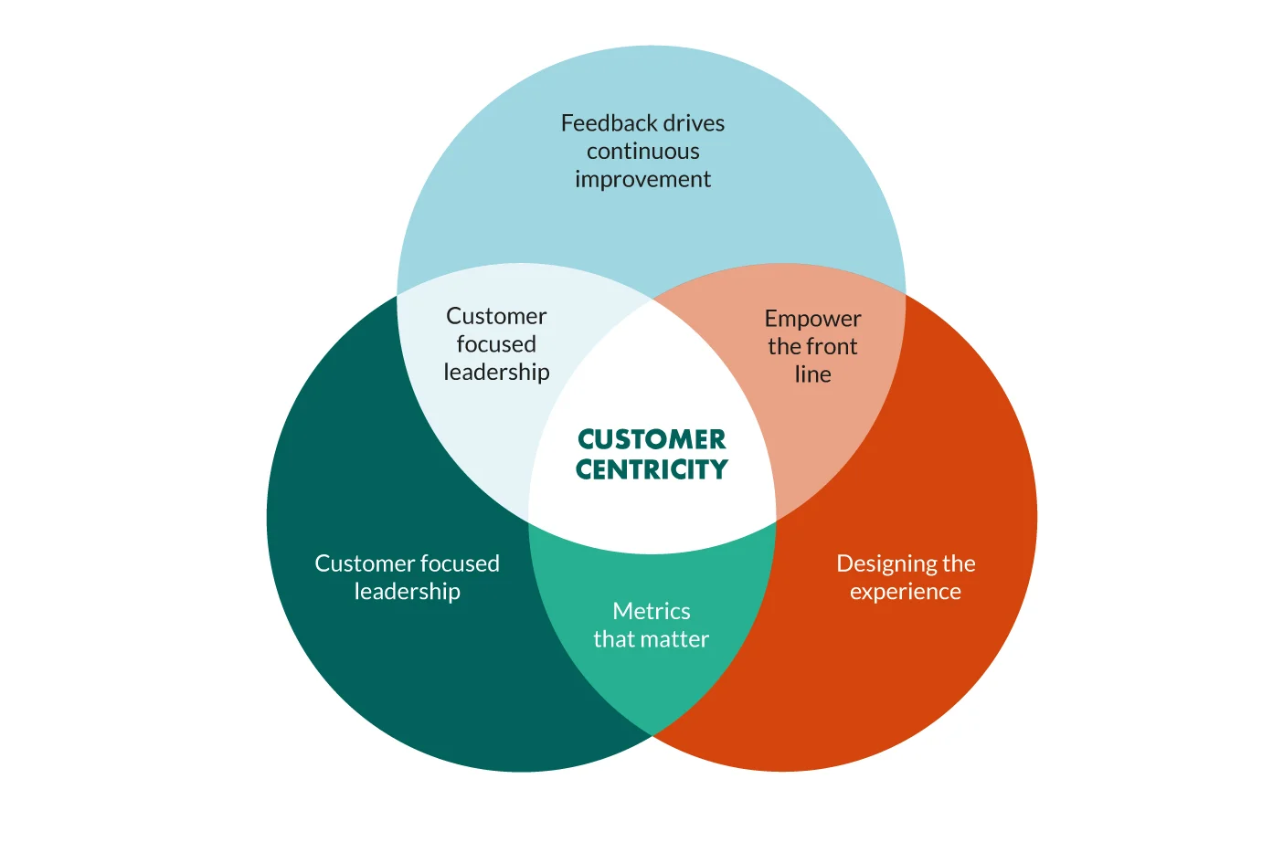 customer centricity graphic