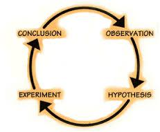 Image result for 4 steps of the scientific method