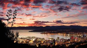 Image result for wellington new zealand