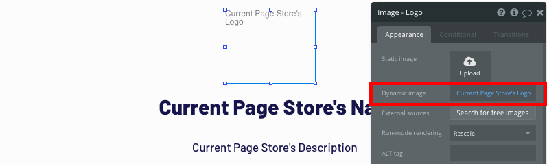 Displaying dynamic page data for a no-code Shopify store