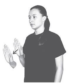 Suyo lenguaje de señas